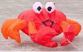 "Billy The Crab ""Red"""